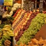 Jakiego rodzaju opakowania do gastronomii producent ma możliwość nam podarować? Producent pojemników plastikowych prezentuje nam przeróżne ich typy
